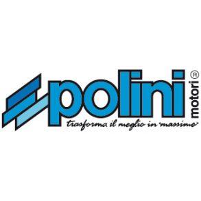 Polini